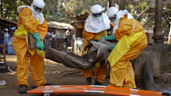 Red Cross Workers Defraud $6 Million Intended for Ebola
