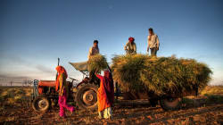 Rajasthan Govt Signs 21 Agricultural Projects Worth Over ₹955 Crore At Global Agritech