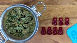 B.C. Child Hospitalized After Eating Marijuana Gummy Bears: