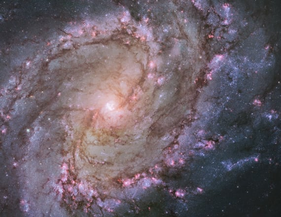 Discovery of morbid galaxy changing NASA's outlook