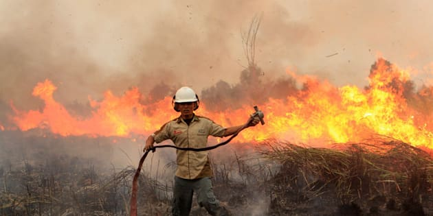 An Indonesian firefighter combats a forest fire in South Sumatra in September 2015. The haze returned to much of Southeast Asia this year.