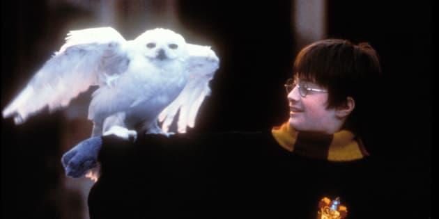 Daniel Radcliffe dans le rôle de Harry Potter dans «Harry Potter à l'école des sorciers».
