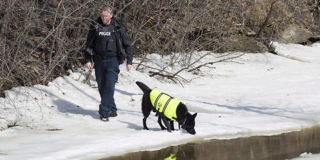 Le chien pisteur, provenant du détachement de Halifax de la Gendarmerie royale du Canada (GRC), a quitté Montréal.