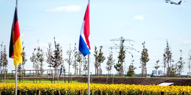 Les arbres plantés pour commémorer le troisième anniversaire du crash du MH17, le 17 juillet.