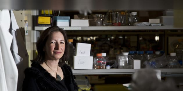 University of Toronto scientist Molly Shoichet poses for a photo on March 2, 2015.