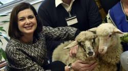 Boldrini adotta due agnelline: