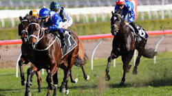 Watch Incredible Mare Winx Win Her 18th Straight Race Despite Totally Blowing The