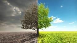 4 cambios radicales en nuestro estilo de vida vs. calentamiento