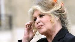 Brigitte Bardot dément une candidature aux