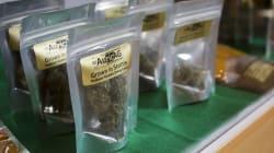 La vente légale de marijuana pourrait rapporter 100 M$ de recettes fiscales au gouvernement du