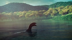 Loch Ness Monster: DNA Testing Aims To Reveal If Mythical Monster Is Just A Fishy