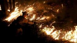 Incendi in California: più di 30 morti e oltre 300 dispersi. Scuole chiuse a San