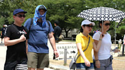 Ola de calor 'derrite' a Japón; van 80