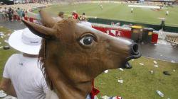 The Cheeky Story Behind The Sneakiest, Naughtiest Horse