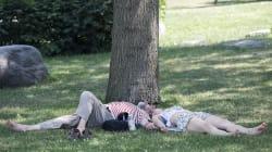 Canicule: le bilan des morts encore revu à la hausse à