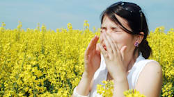 6 astuces naturelles pour que votre rhume des foins vous affecte