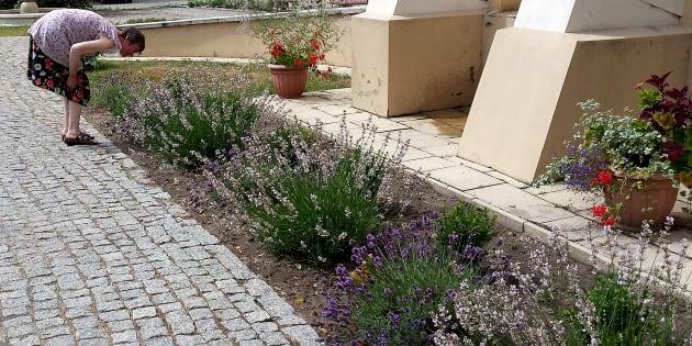 Une femme souffrant de troubles autistiques sent les fleurs du jardin de la maison médicale polonaise Ruskie Piaski.