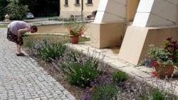 Un jardin suisse pour soigner les troubles