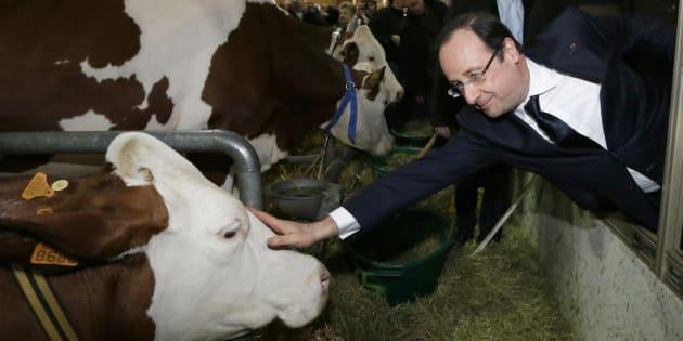 Au salon de l'Agriculture, Macron battra-t-il le record que Hollande a établi en 2013?