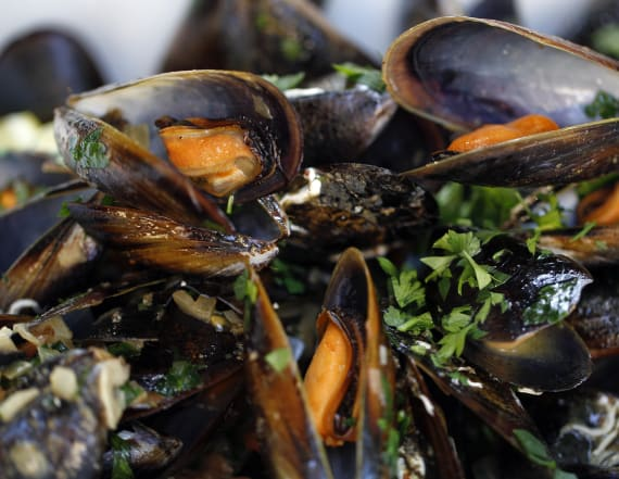 Mussels in Seattle area test positive for opioids