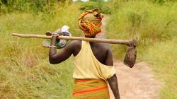 La revolución agrícola será verde y