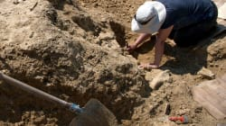 Descubiertos en Guadalajara los restos más antiguos de Homo Sapiens en la