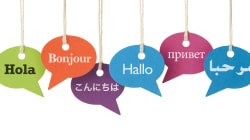 Google翻訳イヤホンが示す二極化する未来