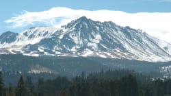 Se permitirá la tala en un tercio del Nevado de