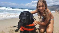 È Lux l'eroe del giorno, salva una bambina in mare a