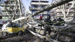 A Roma basta un po' di vento...Tre alberi caduti, mentre una tegola del liceo Virgilio ferisce una