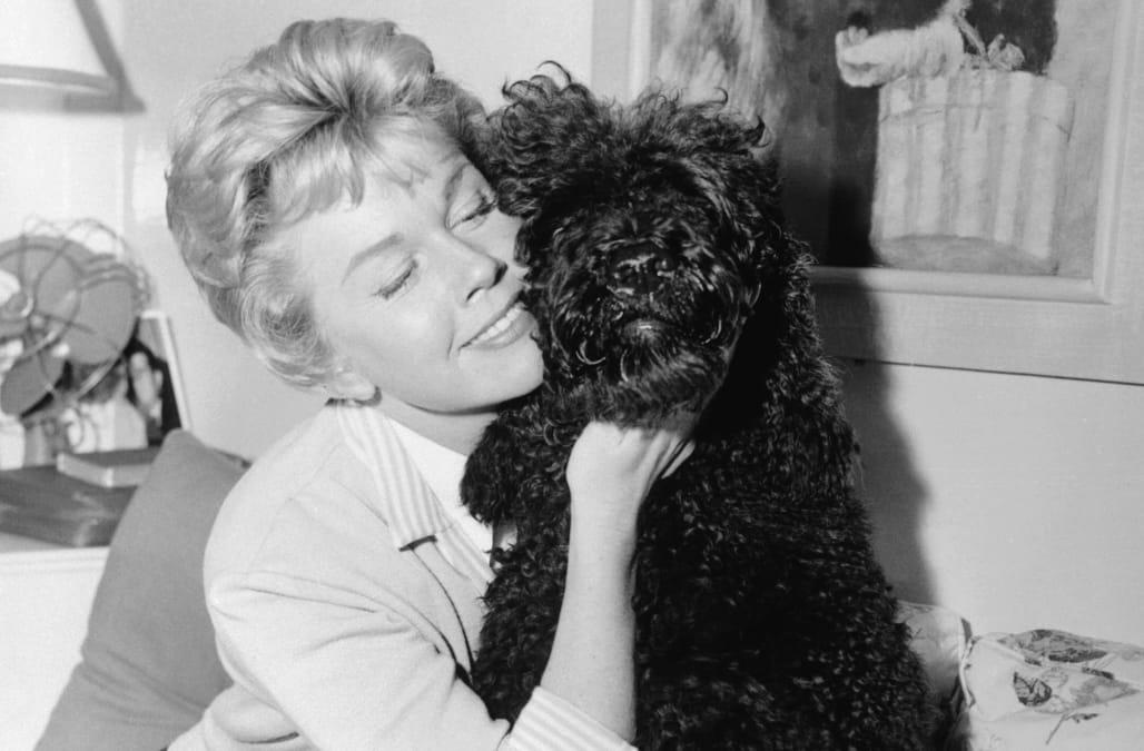 Doris Day Remembered For Unending Devotion To Animal Welfare