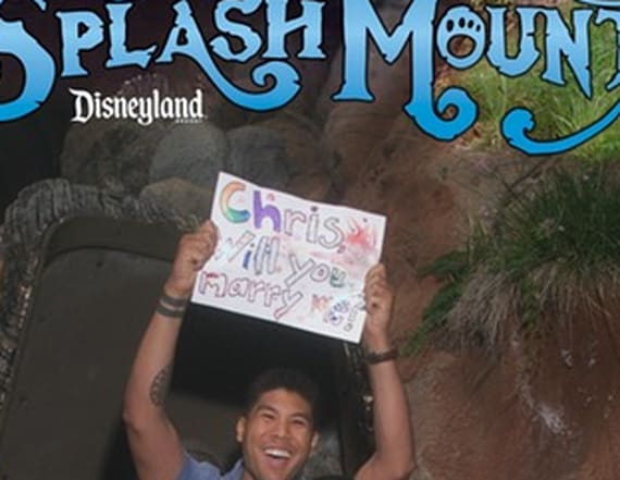 Man proposes to boyfriend on Splash Mountain