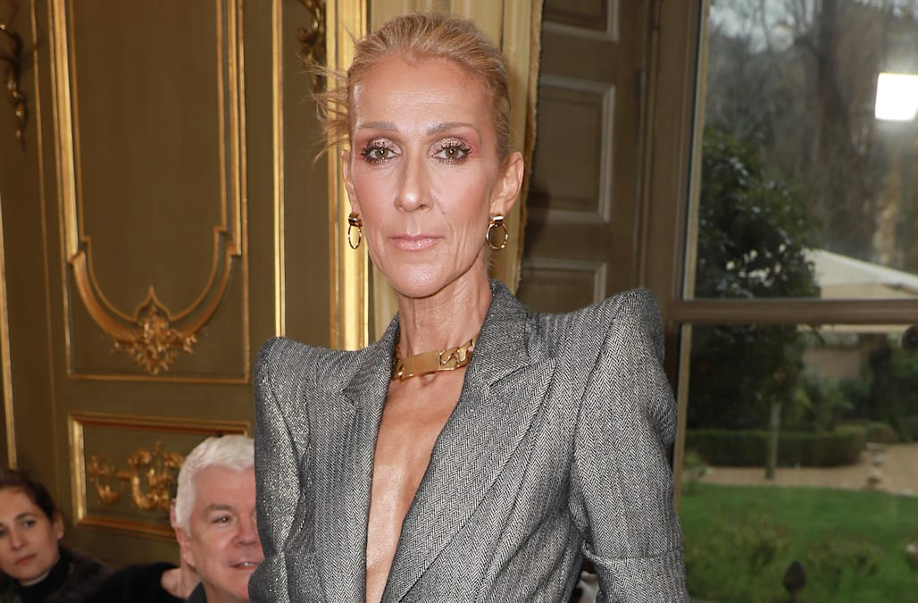 Celine Dion hits help at skinny-shamers: 'Accelerate away me by myself' - AOL