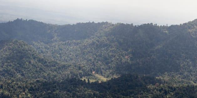 Il est l'heure de se réveiller du cauchemar écologique dans lequel nous plonge le projet de mine d'or en Guyane.