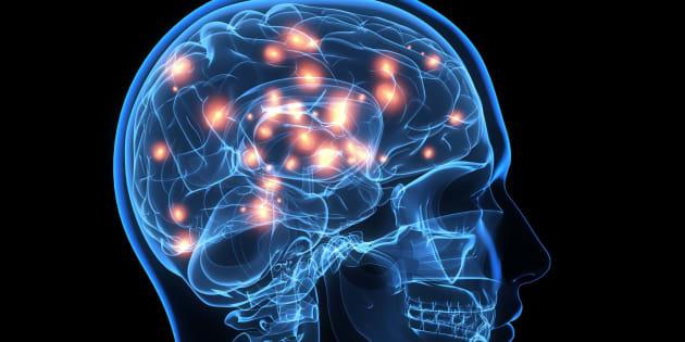 Brain activity, computer artwork.