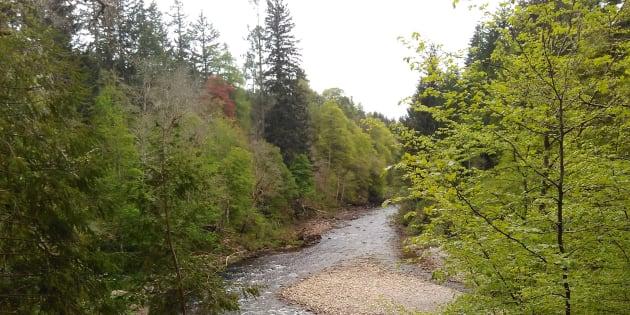 River Findhorn, Randolph's Leap, Moray, Scotland