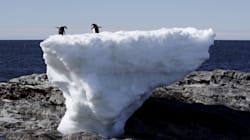 Antarctic Ice Sheet Is Melting Way Faster Than Expected, Scientists