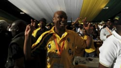 KZN ANC Ruling Will Have No Effect On National Conference - Zizi