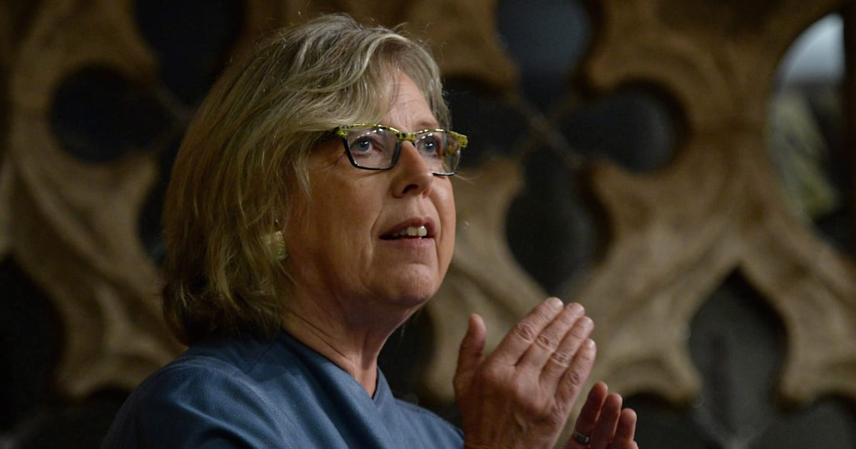 Elizabeth May Invokes Arnold Chan's Last Speech To Push Trudeau On Climate Change