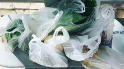 Ya no te darán jamás una bolsa de plástico