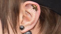 Mais qu'est-il arrivé aux oreilles de Cara