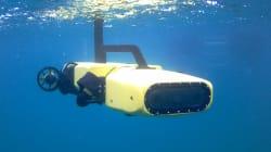 Ce robot a été programmé pour chasser les étoiles de mer tueuses de