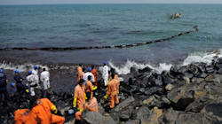 90% Of Oil Spill Off Chennai Coast Cleared, Marine Life Unaffected, Says Tamil Nadu