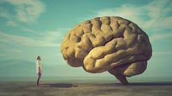 Como o seu cérebro reage quando você escolhe a gentileza e a