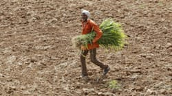 By 2050, 600 million Indians Could Suffer High To Extreme Water Stress Because Of Climate