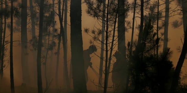 Una pareja de bomberos trata de controlar el fuego en Capelo, cerca de Gois, en la tarde de ayer.