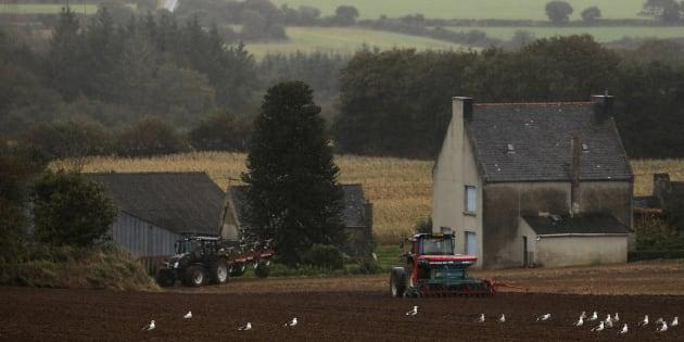 """La campagne cumule tous les handicaps mais incarne """"la vie idéale"""" pour 81% des Français selon une enquête Ifop pour Familles rurales."""
