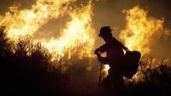 Incendies: les très sérieuses études selon lesquelles il faut combattre le feu... par le
