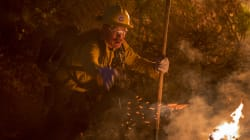 L.A. On Fire: 2800 Hectares Burn In City's Largest Ever