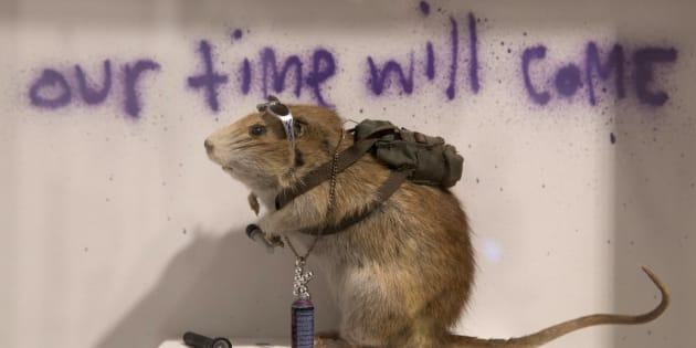 There'll be some surprises in Banksy's exhibition.